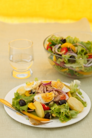 Salad nicoise photo