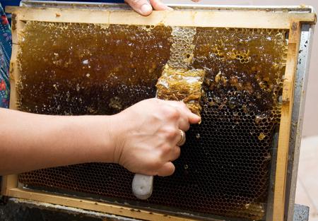 Extracting honey - Manually
