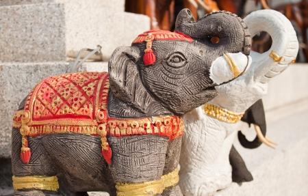 respectful: couple of elephant