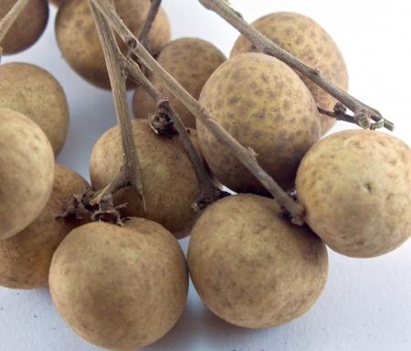 brown lungan