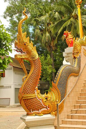 Nagas at stair photo