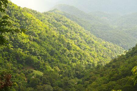 beautiful tropical mountain Stock Photo