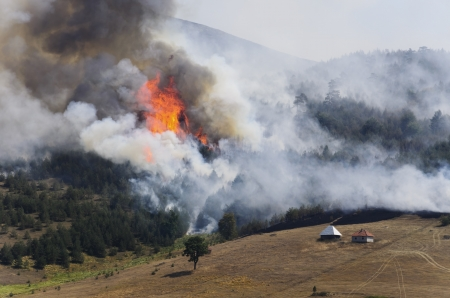 catastrophe: Large fire on Mount Zlatibor. A fire swept through a forest and meadow. Log cabins are in danger. Thick smoke spread. Stock Photo