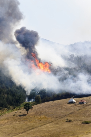 Large fire on Mount Zlatibor. A fire swept through a forest and meadow. Log cabins are in danger. Thick smoke spread. Stock Photo