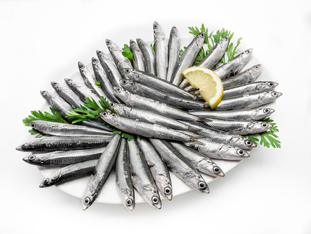Fresh and raw mediterranean anchovy on white background