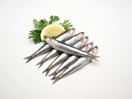 rich flavor: Fresh and raw mediterranean anchovy on white background