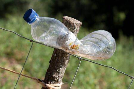 scare: plastic bottle to scare animals in orchard