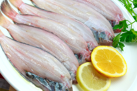 Fresh raw sole fish ready to cook