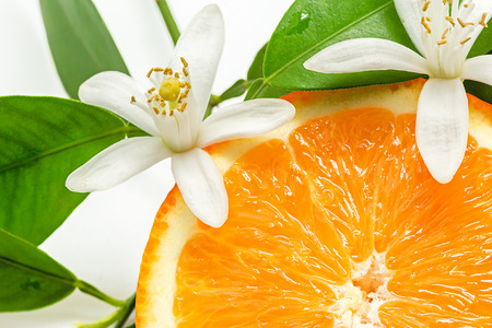 Close up of  fresh orange fruit with leaves and blossom