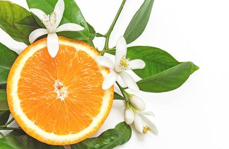 Metà arancione frutta con foglie e fiori isolato su sfondo bianco