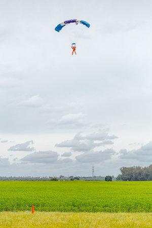 caida libre: Sevilla, España - 7 may, 2016: Paracaidista se acerca para el aterrizaje. Skydive España es el centro de paracaidismo situado en La Juliana aeródromo, a unos 20 km al suroeste de Sevilla, España. En Skydive España vuelan hasta 15.000 pies, la altitud más alta de Europa y de Editorial