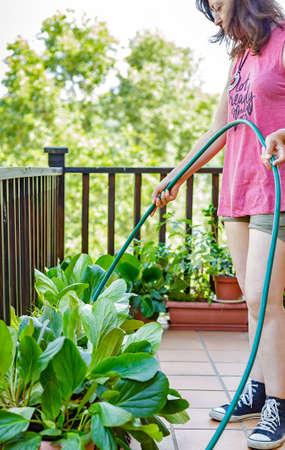 watering plants: Portrait of woman watering plants on terrace Stock Photo