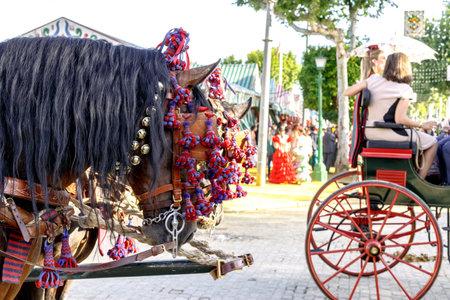 Seville, Spain - May 03, 2017:  Traditional riding horse carriage celebrating Seville's April Fair. Foto de archivo - 97410410