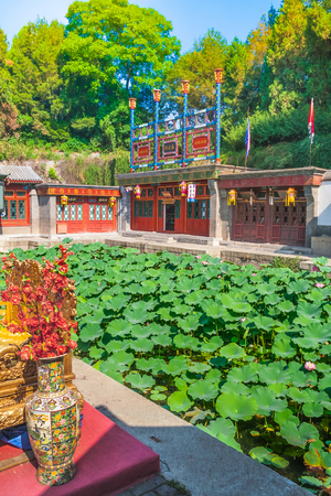 Lotus pond in the Summer Palace, Beijing, China