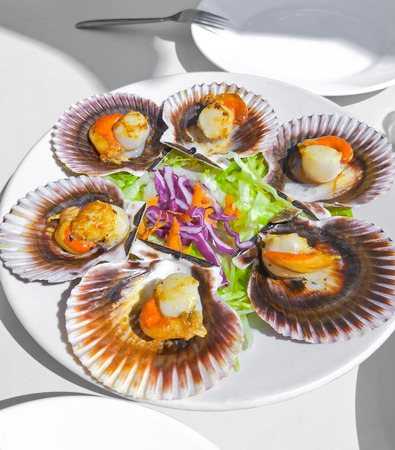 Grilled Galician Scallops with salad on white Imagens