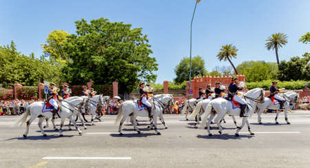 Seville, Spain - June 01, 2019: Calvary during display of Spanish Armed Forces Day in Seville, Spain