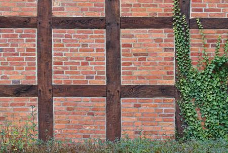 Hout omlijst rode bakstenen muur gedeeltelijk bedekt met groene klimop