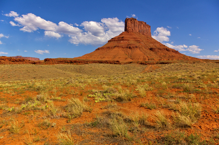 Tall red mesa with desert plants in the foreground and clear blue sky, Utah, USA