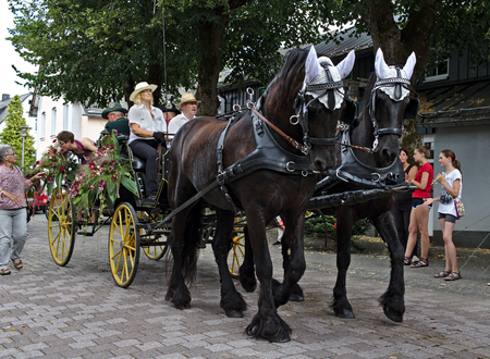 Usseln, Germany - July 30th, 2018 - Carriage drawn by two dark brown horses at a parade