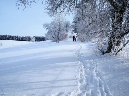 Rear view of parent and child walking along a trail through deep snow in a wintery landscape on a sunny day