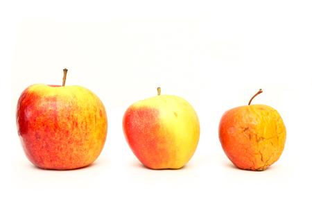 Ein Bild von drei gewöhnlichen Äpfeln, ohne Modifikationen..wie man es aus dem Shop kennt. Das Bild zeigt die Reifung der Äpfel. Einer ist frisch, einer ist älter und einer ist trocken.