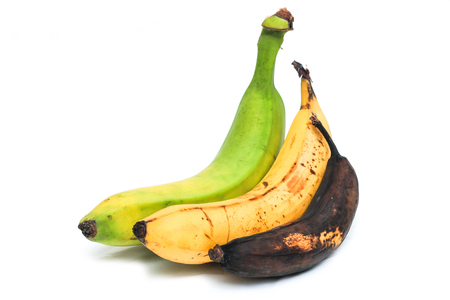 A picture of three ordinary bananas, without modifications..as you know from the shop. The picture shows the maturing of the bananas. One is green, one is yellow and one is overripe. Banque d'images
