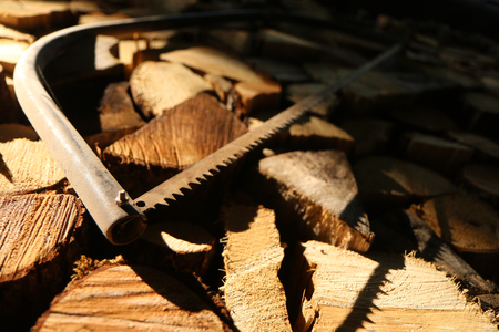 A picture of aligned chopped wood with an old saw on it.