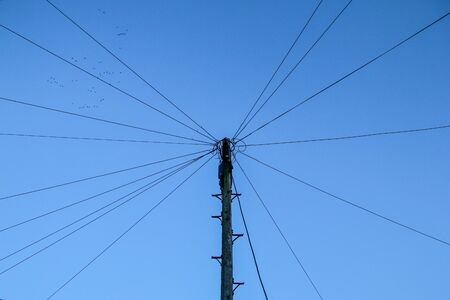 A single pole with many cables around connected into one knot against the sky. The cables are looking like rays around the top of the pole.