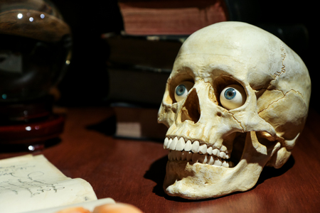 The model of the skull with realistic eyes standing on the old table among the old books and glass ball.