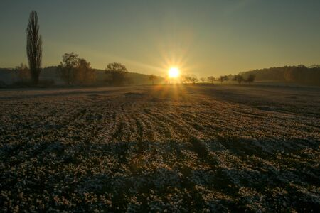 A picture from the late afternoon on the frozen field. The sun is going down behind the trees.