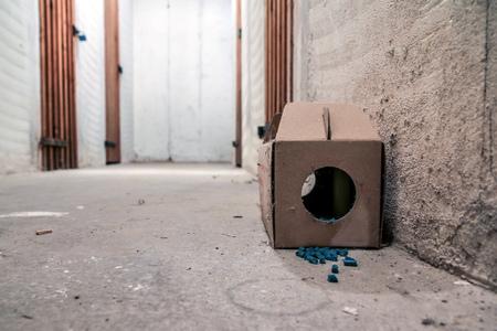 Een foto van een papieren rattenval met wat korrels met gif buiten de doos. Gevaarlijk om aan te raken of te eten. Stockfoto