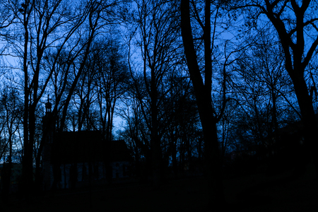 A picture from the city park when the darkness comes. The silhouettes of the trees are only visible with the nests of the crows on them. Also the church is behind Reklamní fotografie