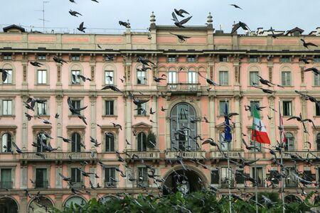 Beaucoup de pigeons volant au-dessus des gens et des toits des maisons à Milan en Italie pendant le sombre jour de pluie.