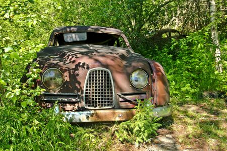 Vintage feeling picture of cars turned into wrecks deep in swedish forests. The nature is slowly taking control.