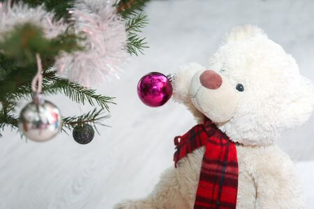 A cute teddy bear with scarf is giving the christmas decoration on the christmas tree. He holds the ball in its paws.
