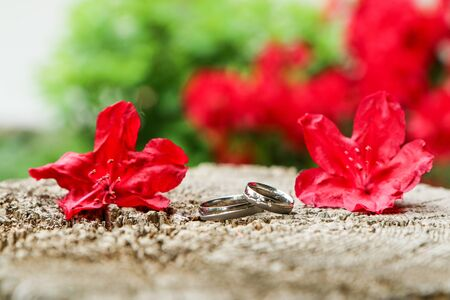 A detail picture of two wedding rings lying on a wood among the red flowers. Reklamní fotografie