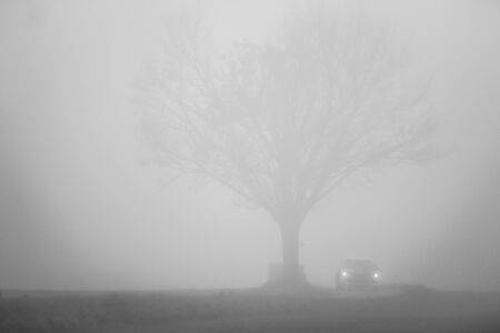 The car drives in the mist or fog. Only the silhouettes are visible, the atmosphere is gloomy. Standard-Bild