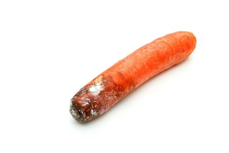 One mouldy carrot. Rotten and uneatable. Isolated on white background.