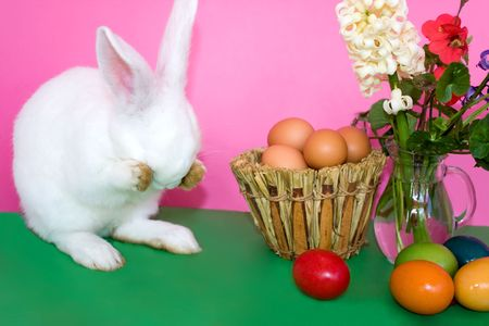 Holidays - Easter photo