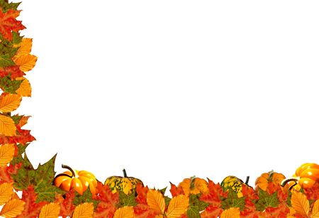 Illustrations - White background with fall leaves and pumpkins  half frame.