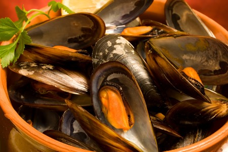 Food Recipes - First Courses - Mussels soup closeup. Stock Photo - 8131132