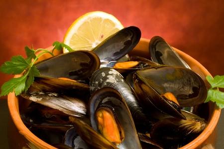 Food Recipes - Mussels soup closeup.