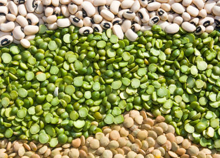 food - Legumes - Mix of lentils, peas and black eyed peas. photo