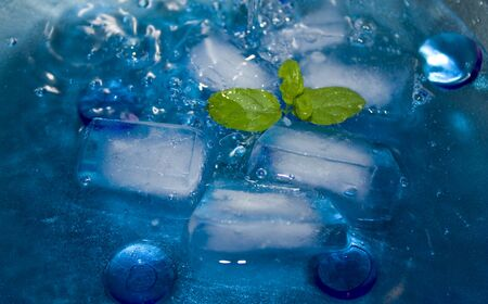 Drinks - Cocktail mix with ice cubes and mint. photo