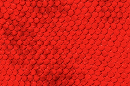 Backgrounds and textures - red reptile skin texture. Stock Photo - 9150266