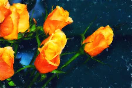 Fine Art - Flowers - Orange roses painted on dark canvas. Stock Photo - 9171123