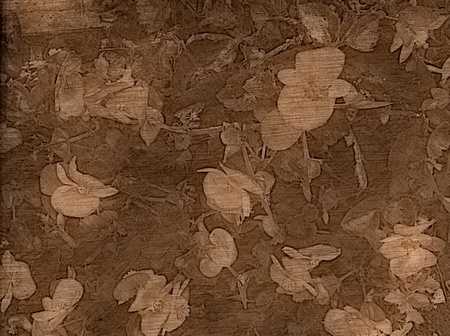 Artistic Backgrounds - Old fashioned floral background. photo