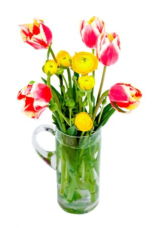 Bouquet of red/white tulips and yellow peonies isolated on white background. Stock Photo - 12887933