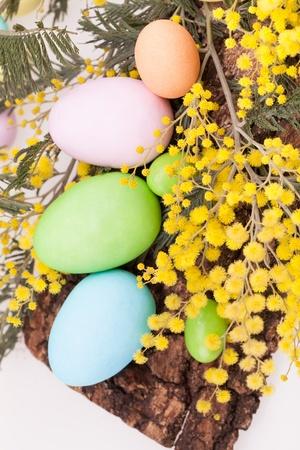 mimose: Uova di Pasqua in colori pastello - Uova di Pasqua in colori pastello su corteccia decorato con mimose Archivio Fotografico