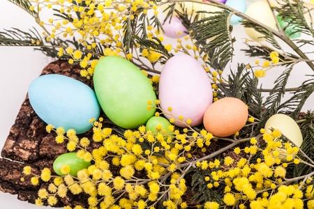 mimose: Uova di Pasqua e Mimosas - Uova di Pasqua in colori pastello su corteccia decorato con mimose